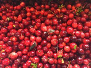 cranberry compôte zelfmaken