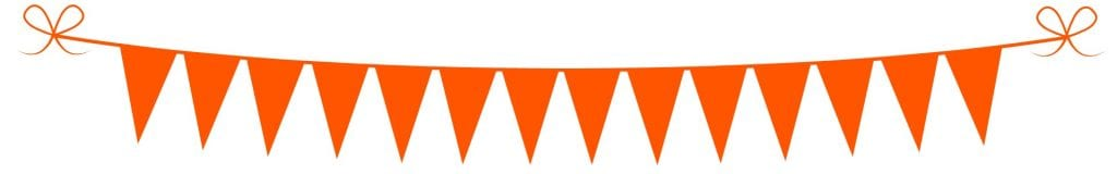Koningsdag-oranje-slinger- Hallo Terschelling