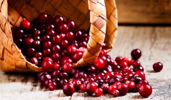 Cranberry-napluk- Hallo-Terschelling