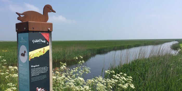 polderpracht fietsroute op Terschelling – Hallo Terschelling